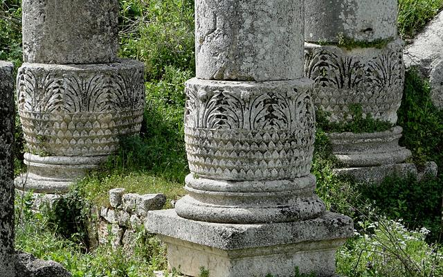 Columns with a bulbiform base in Apamea, Syria. Photograph by Bernard Gagnon. Credit: Wikimedia Commons
